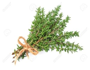18533937-thyme-fresh-herb-isolated-on-white-background-stock-photo-thyme